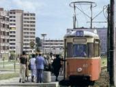 Birkenallee mit Linie 5