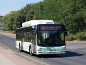 Niederflurbus MAN Lion's City CNG Wagen 443