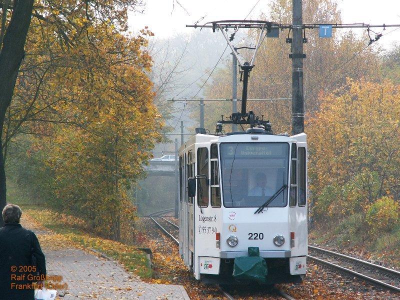 Herbst in Frankfurt